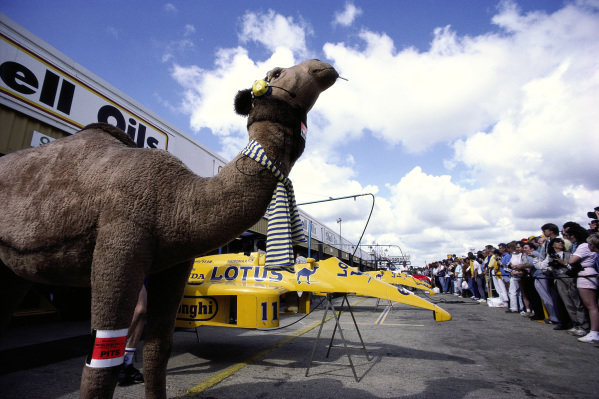 Camel sponsorship model and Lotus bodywork on show for fans during the pitlane walkabout.