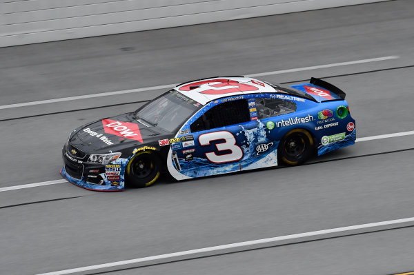 Monster Energy NASCAR Cup Series GEICO 500 Talladega Superspeedway, Talladega, AL USA Friday 5 May 2017 Austin Dillon, Richard Childress Racing, Dow Intellifresh Chevrolet SS World Copyright: John K Harrelson LAT Images