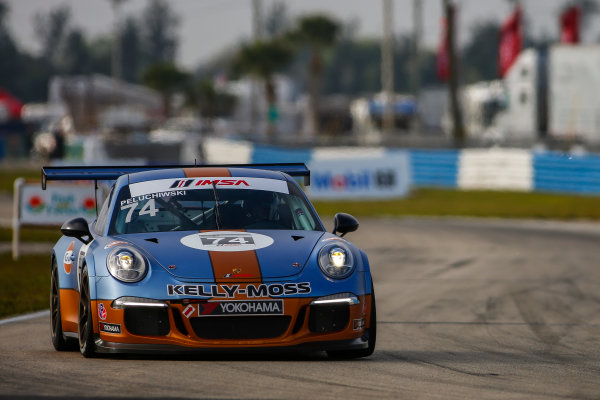 16-18 March, 2016, Sebring, Florida, USA 74, Bill Peluchiwski, Platinum, M, 2015 Porsche ?2016, Jake Galstad LAT Photo USA