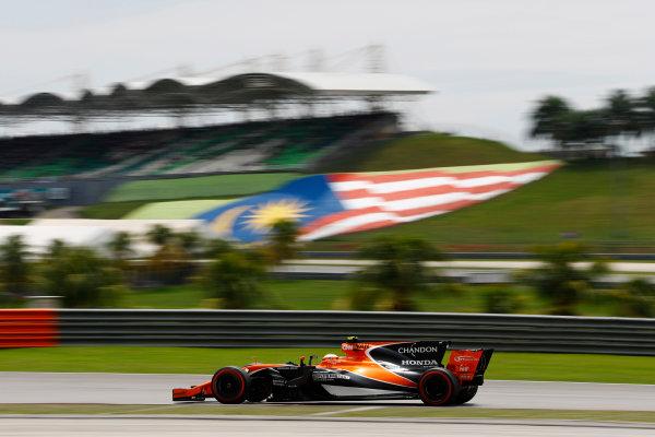 Sepang International Circuit, Sepang, Malaysia. Saturday 30 September 2017. Stoffel Vandoorne, McLaren MCL32 Honda.  World Copyright: Steven Tee/LAT Images  ref: Digital Image _R3I4101