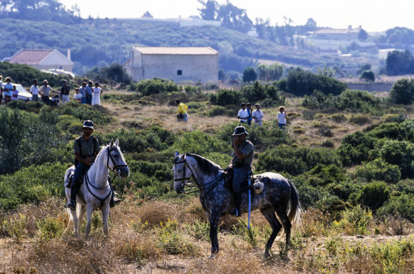 Policemen on horses.
