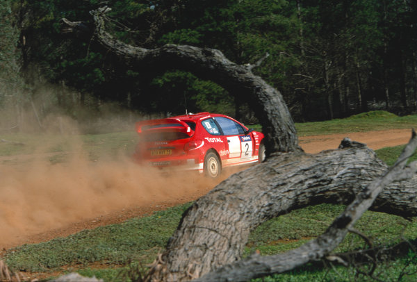 2003 World Rally ChampionshipRally Australia. 3rd - 7th September 2003Richard Burns/Michael Park (Peugeot 206 WRC), actionWorld Copyright: McKlein/LAT Photographicref: 35mm Image A13