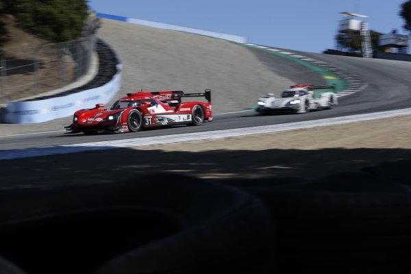 #31: Whelen Engineering Racing Cadillac DPi, DPi: Felipe Nasr, Pipo Derani, #01: Cadillac Chip Ganassi Racing Cadillac DPi, DPi: Renger van der Zande, Kevin Magnussen