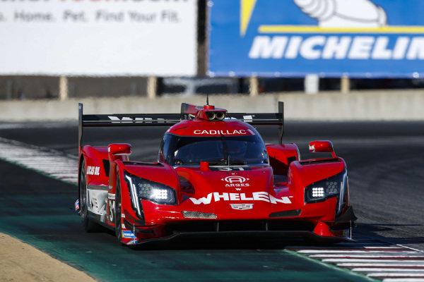 #31: Whelen Engineering Racing Cadillac DPi, DPi: Felipe Nasr, Pipo Derani