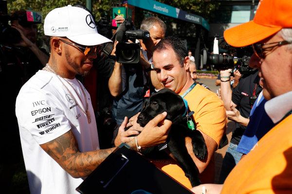 Albert Park, Melbourne, Australia. Wednesday 22 March 2017. Lewis Hamilton, Mercedes AMG, meets a fan with a dog. World Copyright: Sam Bloxham/LAT Images ref: Digital Image _W6I0307