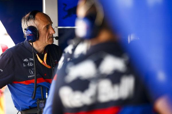 Franz Tost, Team Principal, Toro Rosso